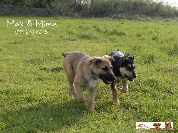Max i Mima