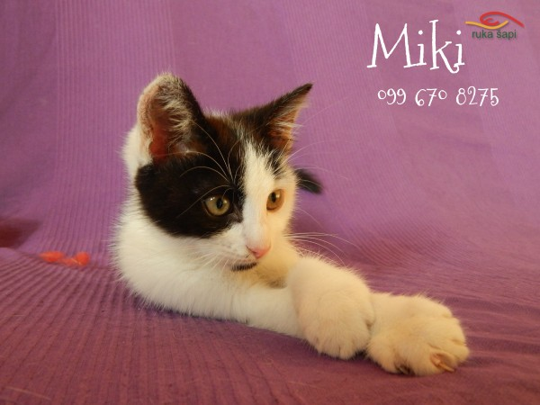 miki2